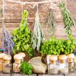Dầu gội thảo dược – Giải pháp dịu nhẹ cho mái tóc hư tổn