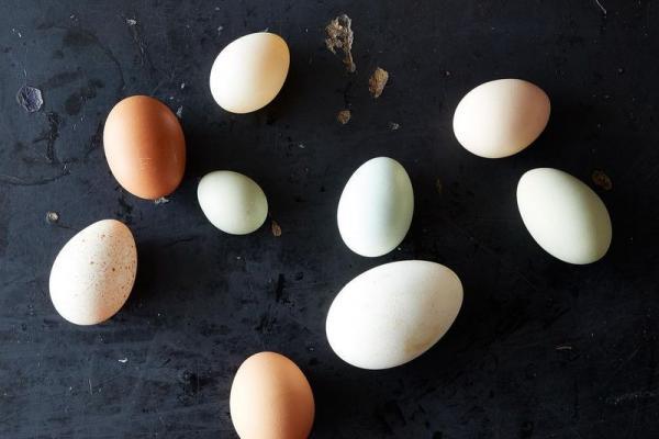 Trị mụn cám bằng trứng gà, có thực sự hiệu quả?