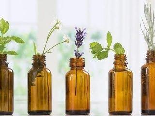 Các thần dược nên góp mặt trong serum dưỡng tóc