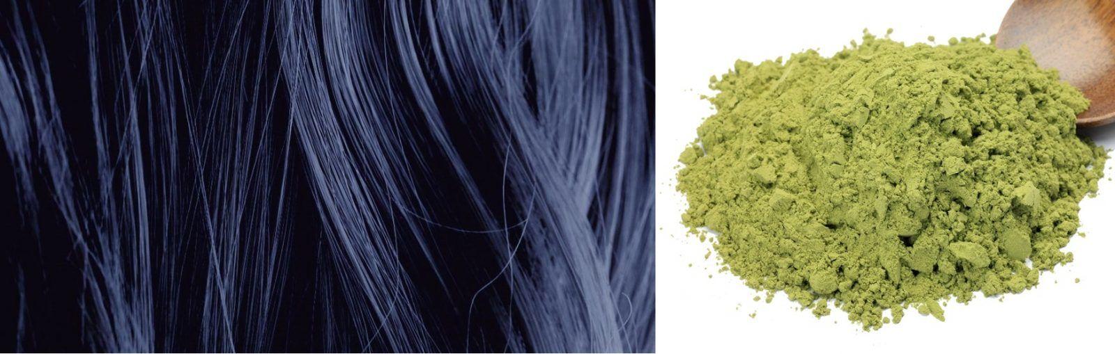 Nhuộm tóc màu xanh đen (chàm) từ lá chàm
