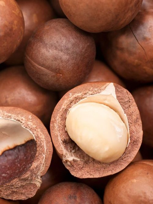 """""""Nhập môn"""" cách sử dụng tinh dầu Macadamia cho từng loại tóc"""