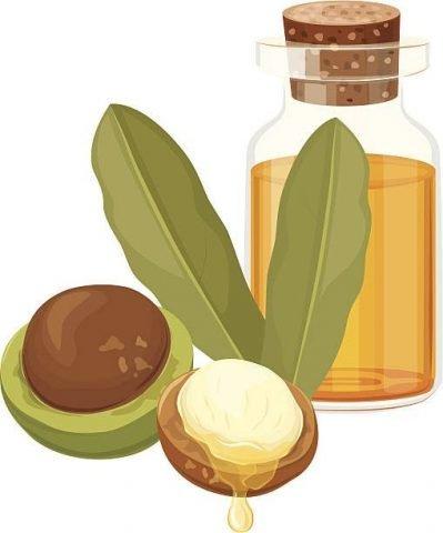Hạt macadamia tốt cho tóc, da & sức khỏe mọi lứa tuổi