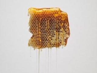 4 bí mật trắng da từ mật ong chỉ mình bạn biết!