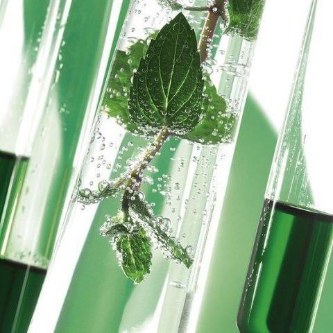3 lý do vì sao nên đầu tư một bộ dưỡng da tế bào gốc thực vật