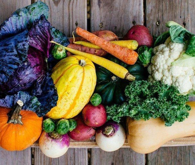 thực đơn giảm cân bằng hoa quả