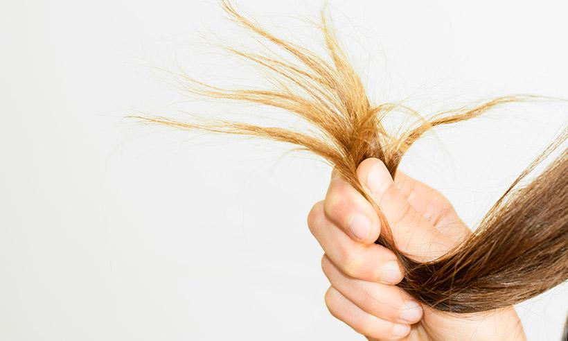 dưỡng tóc chẻ ngọn bằng dầu dừa