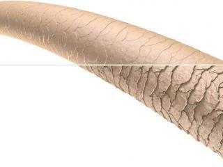 Quy trình phục hồi keratin nguyên chất chuẩn cho tóc