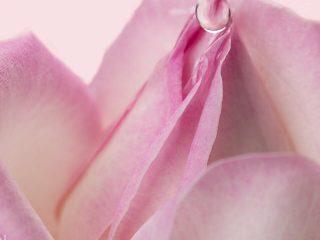 Nước hoa hồng là Toner, quan niệm này liệu có đúng?