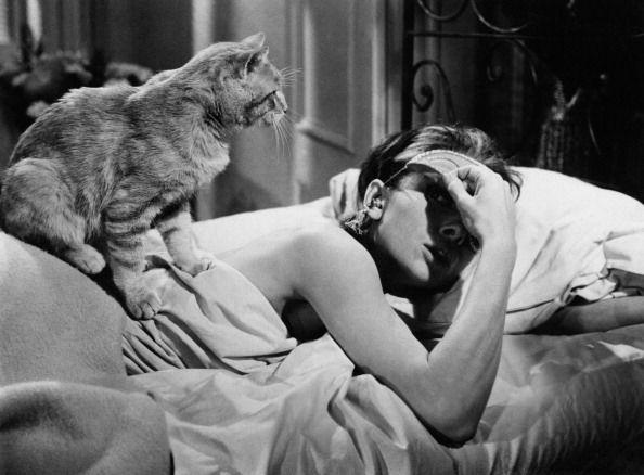 Bạn có biết: ngủ ngon cũng là một mẹo giúp tăng đề kháng cơ thể