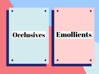 """Nếu đang tìm một sản phẩm khoá ẩm, thì Occlusives hay Emollients mới là """"the one"""" cho da đây?"""