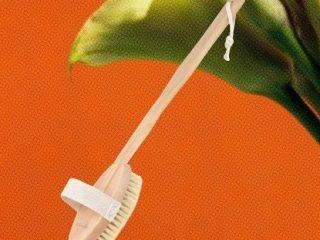 Muốn thực hiện phương pháp chải da khô, hãy bắt đầu với những dụng cụ chải sau