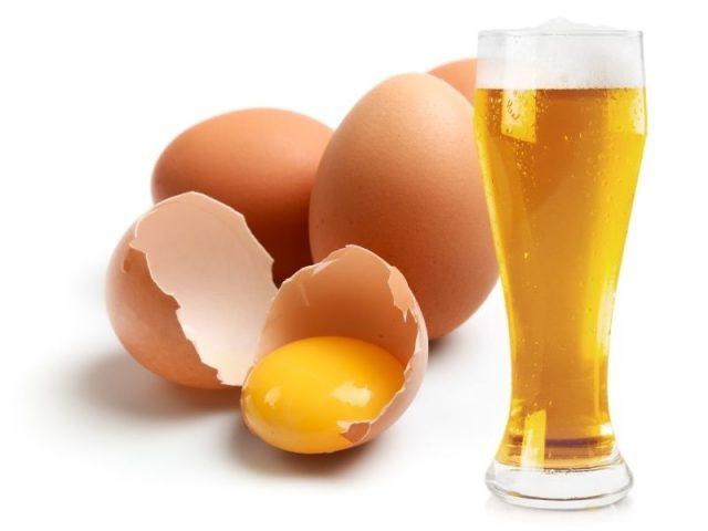 Gội đầu với bia và trứng gà