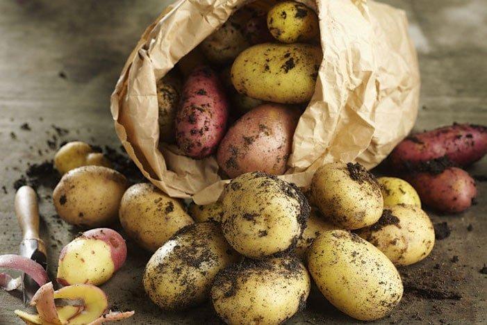 Mặt nạ khoai tây có làm da bắt nắng không? Làm sao để da không bắt nắng?