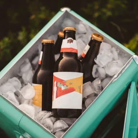 Gội đầu bằng bia có tác dụng gì? Top 12 mẹo gội đầu bằng bia tóc dài nhanh và trị gàu hiệu quả