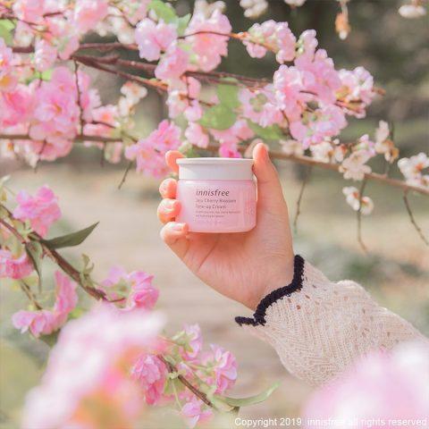 Innisfree Jeju Cherry Blossom Tone Up Cream: Bí mật dưỡng trắng từ hoa anh đào