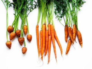 Bạn có muốn thử skincare với cà rốt?