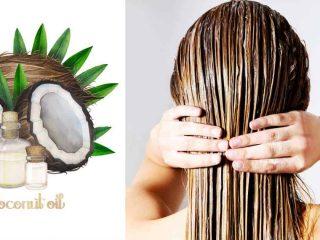 Dầu dừa có thật sự tốt cho tóc ?