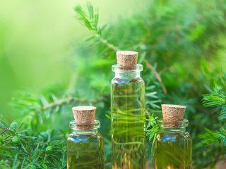 Bỏ túi ngay 3 loại tinh dầu tốt nhất cho quá trình điều trị mụn