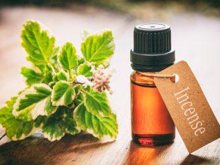 Bạn đã nghe đến hiệu quả skincare của dầu trầm hương chưa?