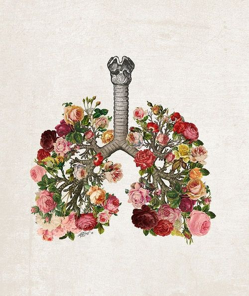 Hôi miệng do bệnh phổi hoặc xoang