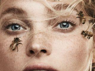 Làm đẹp bằng nọc ong. Chia sẻ của người từng trải