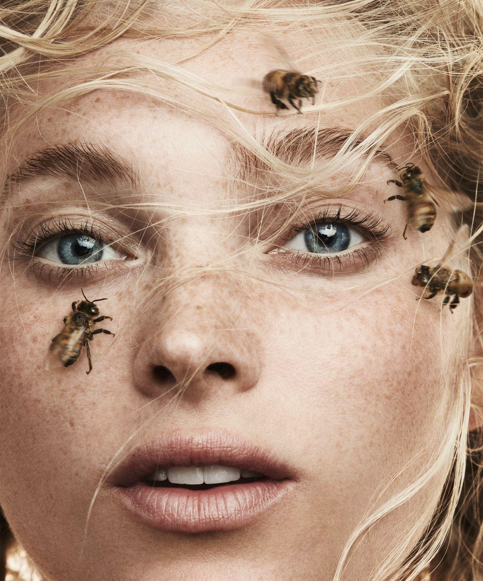 công dụng nọc ong đêm tới trong làm đẹp da