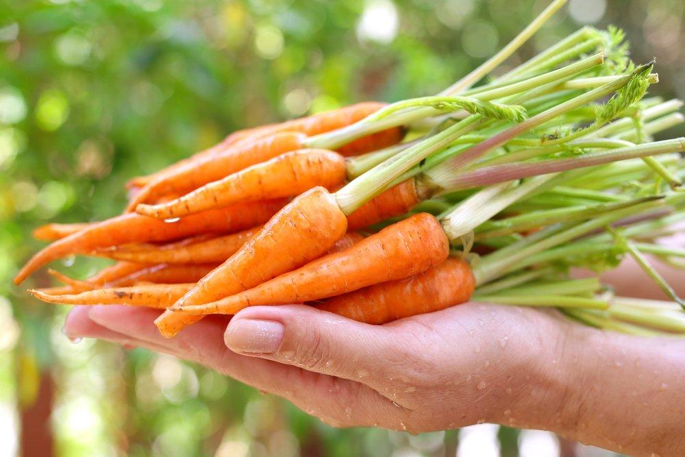 Cách Trị Mụn Tại Nhà với cà rốt