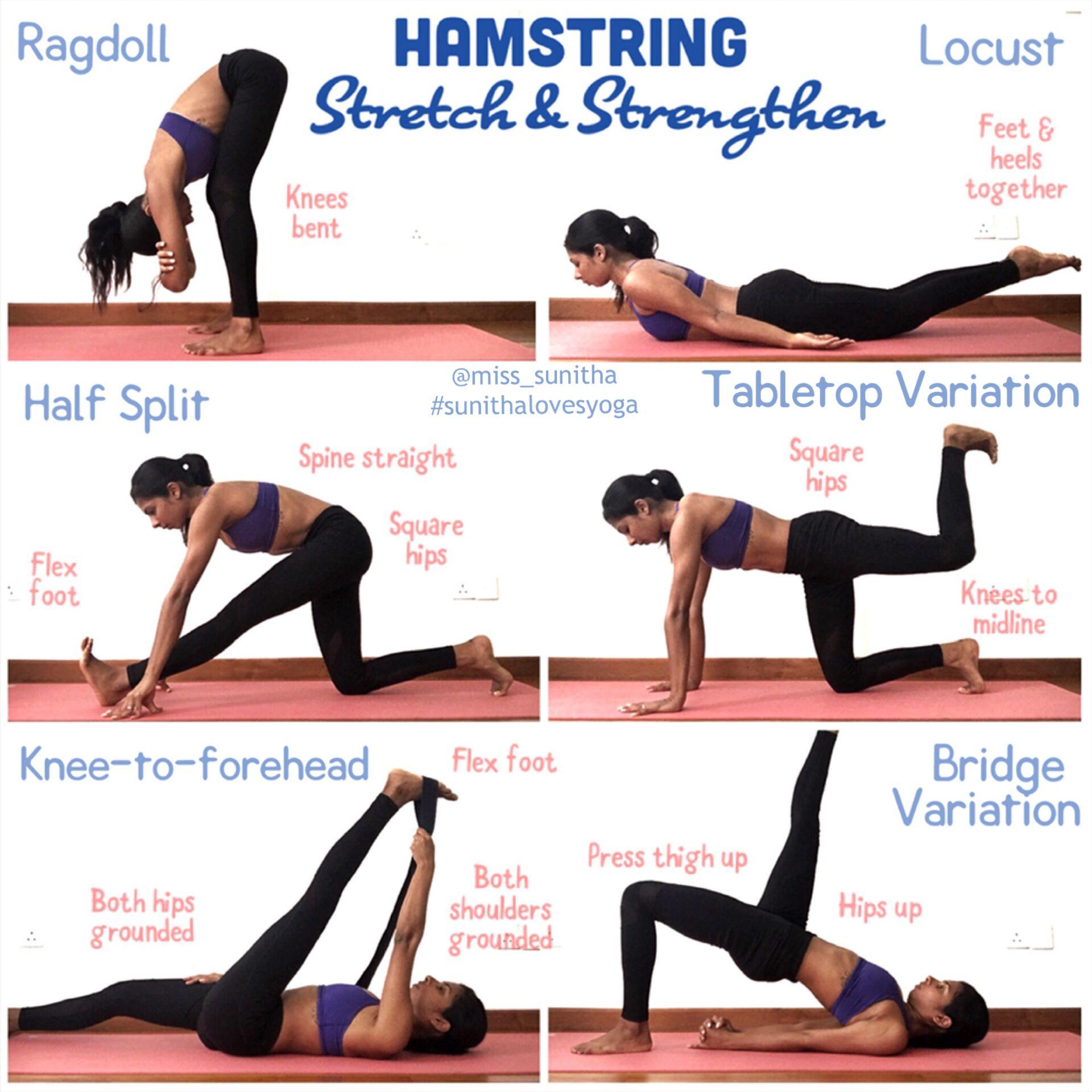 Kết quả hình ảnh cho A Basic Hamstring