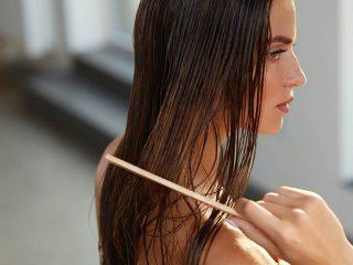 Cấy tóc sinh học hay cấy tóc tự thân thì tốt?