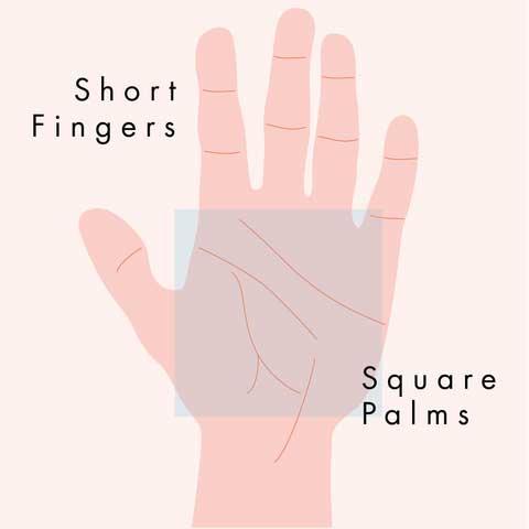 Thổ: lòng bàn tay vuông và ngón tay ngắn Xem Tướng Lòng Bàn Tay