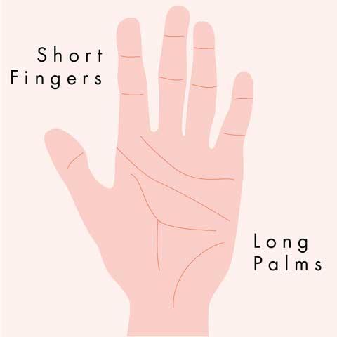 Hỏa: lòng bàn tay dài và ngón tay ngắn