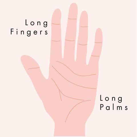 Phong: lòng bàn tay vuông và ngón tay dài.