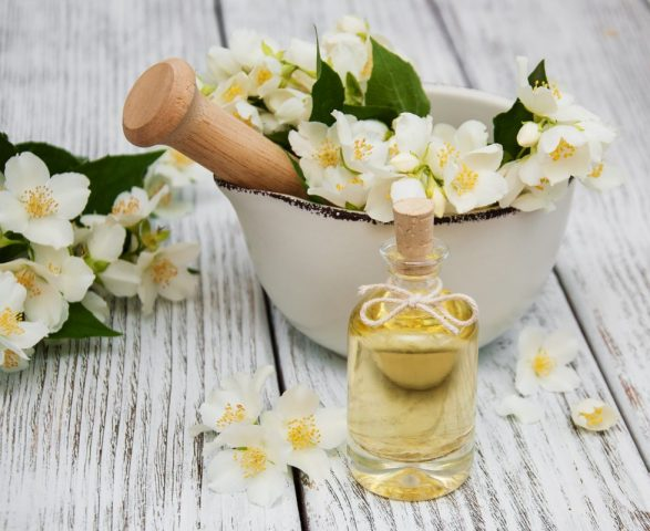Vì sao hoa lài lại được hội chị em sử dụng để dưỡng tóc nhiều đến thế?