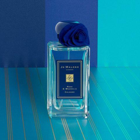 Thương nhớ mùi hương hoa mộc lan yêu kiều