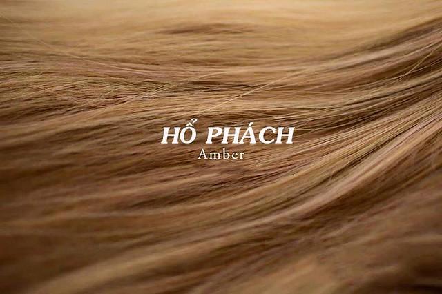 Mùa thu đông ấm áp, chắc chắn bạn phải thử ngay màu tóc nâu hổ phách này