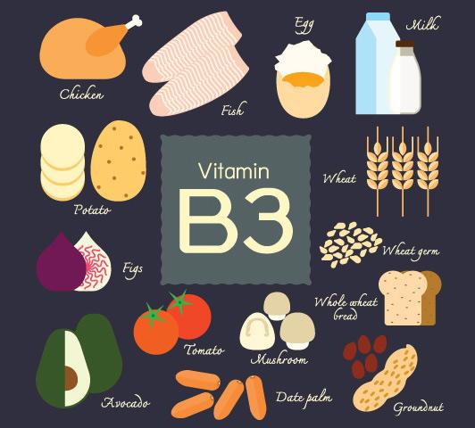 Kết quả hình ảnh cho vitamin b3