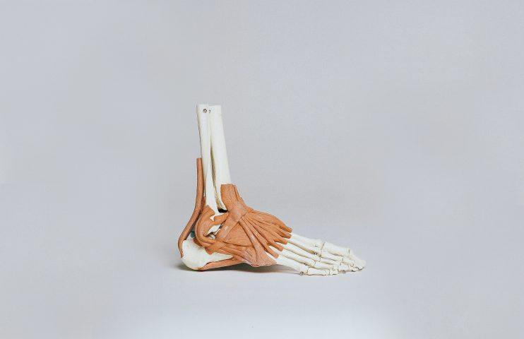 đôi chân người