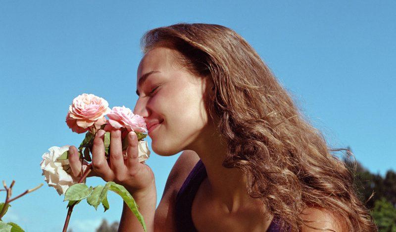 Dưỡng da tại nhà với cánh hoa hồng, tại sao không?