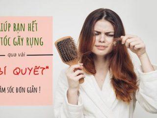 Cách khắc phục tóc rụng nhiều ngay tại nhà chỉ với 6 bí quyết đơn giản