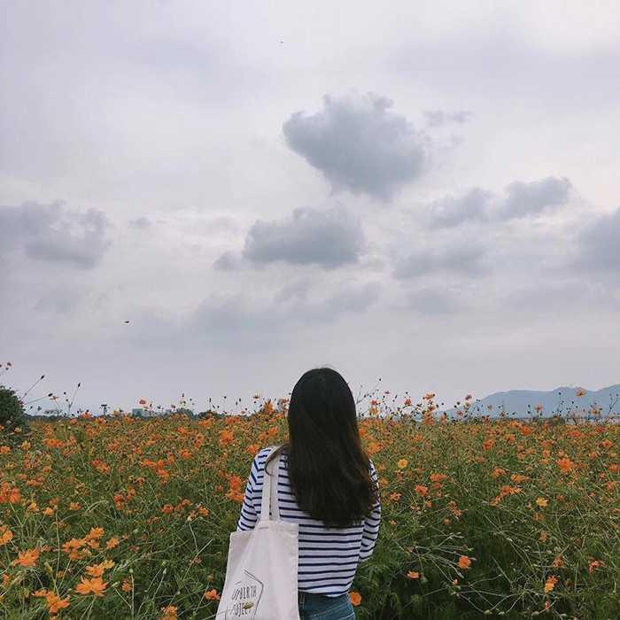 với hoa