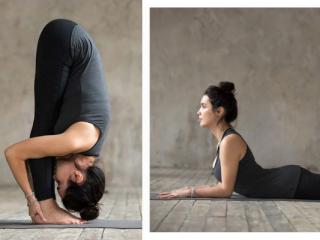 Bài tập yoga đúng cách dành cho người bắt đầu: Cơ bản và kỹ thuật tốt