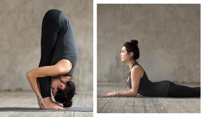 Các Bài tập yoga đúng cách dành cho người bắt đầu: Cơ bản và kỹ thuật tốt