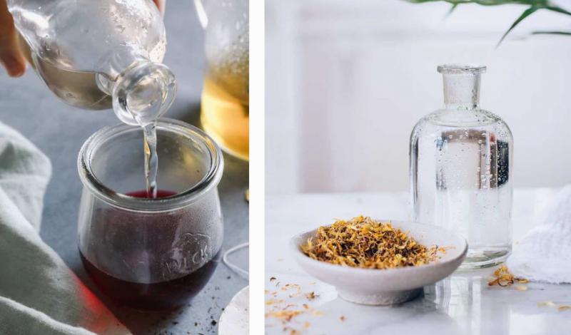 5 cách làm toner với nước cây phỉ đơn giản, tiết kiệm và cực tốt cho da