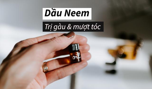 Dầu Neem – Phương pháp điều trị lâu đời giúp tóc không xơ rối