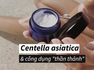 Cica – Thành phần chăm sóc da ngày càng được giới làm đẹp phát cuồng