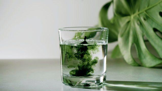 """Chlorophyll – Thành phần trị mụn """"thần kỳ"""" ít ai biết"""