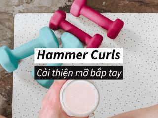 Hammer Curls là gì? Cách luyện tập cơ tay to và săn chắc ngay tại nhà