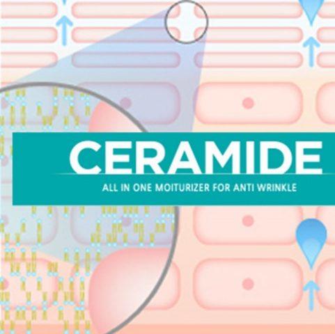ceramide có tác dụng chống lão hóa, bảo vệ da