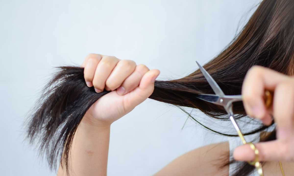 Các bước cắt tóc tại nhà
