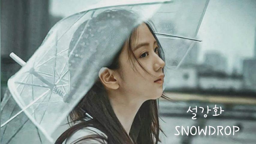 jisoo blackpink trong snowdrop